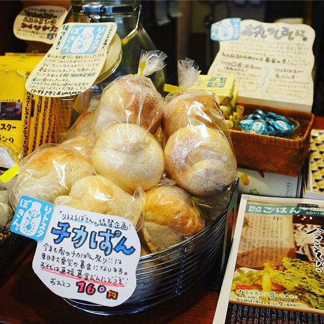 本日東日本大震災から6年…と、この週末は今年も「春のチカぱん祭り」!と、おなじみのお客さんで友人のチカコさんの丸パンは2個入り160円…お代はそのまま当店の小さな募金「リトスタぼきん。」の瓶へお願いします!たくさんの募金が集まって子ども達の奨学金になりますように!よろしくお願いします(お)